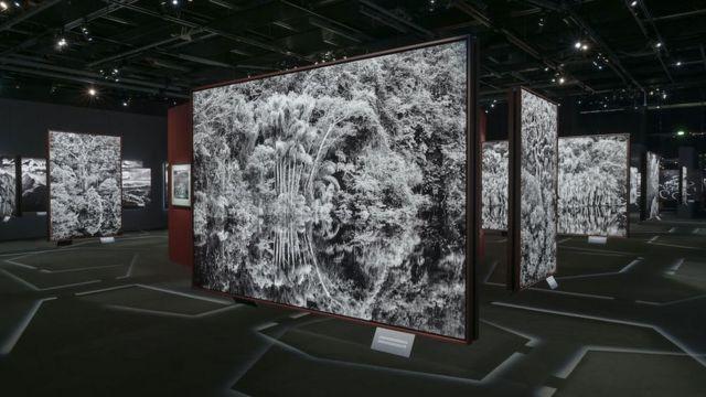 """imagem da exposição """"Amazônia"""" na Filarmônica de Paris"""