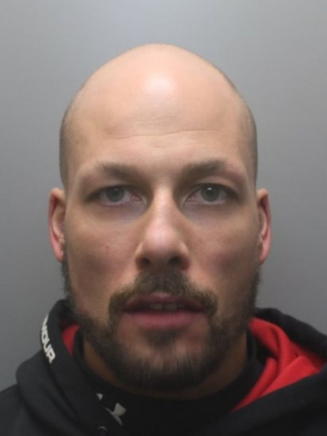 Wirral cat killer who broke a puppy's jaw is jailed
