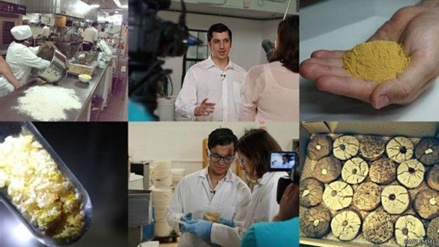 Collage de imágenes que muestran el proceso de producción de estos polvos.