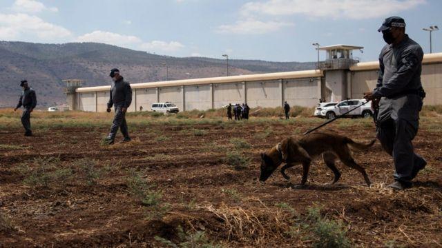 Funcionarios con perros entrenados buscan rastros de los prófugos en las afueras de la cárcel.