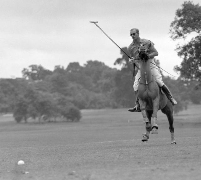 """الأمير فيليب وهو يلعب البولو في ملعب """"كاودراي بارك"""" في دور نصف النهائي من كأس روهامبتون."""