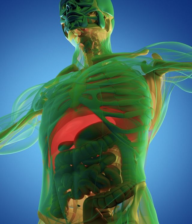 Image of a 3D scan of human anatomy