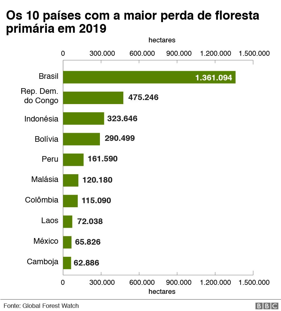 gráfico de países que mais perderam florestas virgens