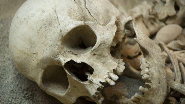 Neandertais extintos