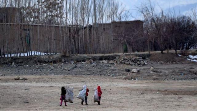 بیشتر کودکان کار خیابانی در ایران و افغانستان به پلاستیک فروشی، جمعآوری زبالهها، انتقال اموال مشتریان مشغولند
