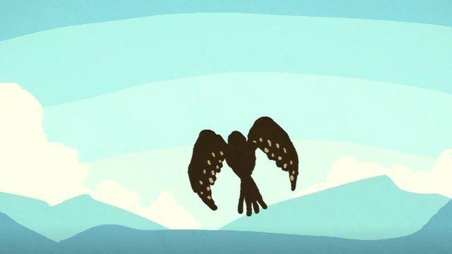 Cartoon of rare bird