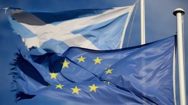 علما اسكتلندا والاتحاد الأوروبي