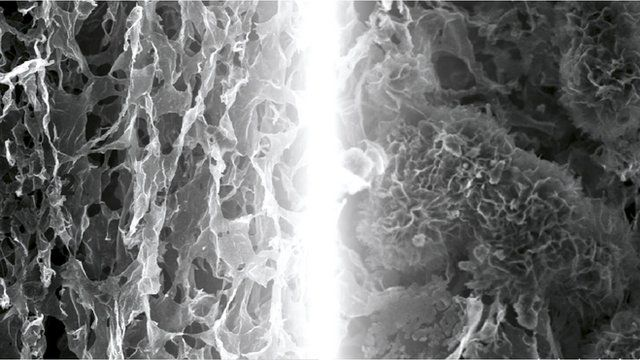 Two microscope images of graphene electrodes