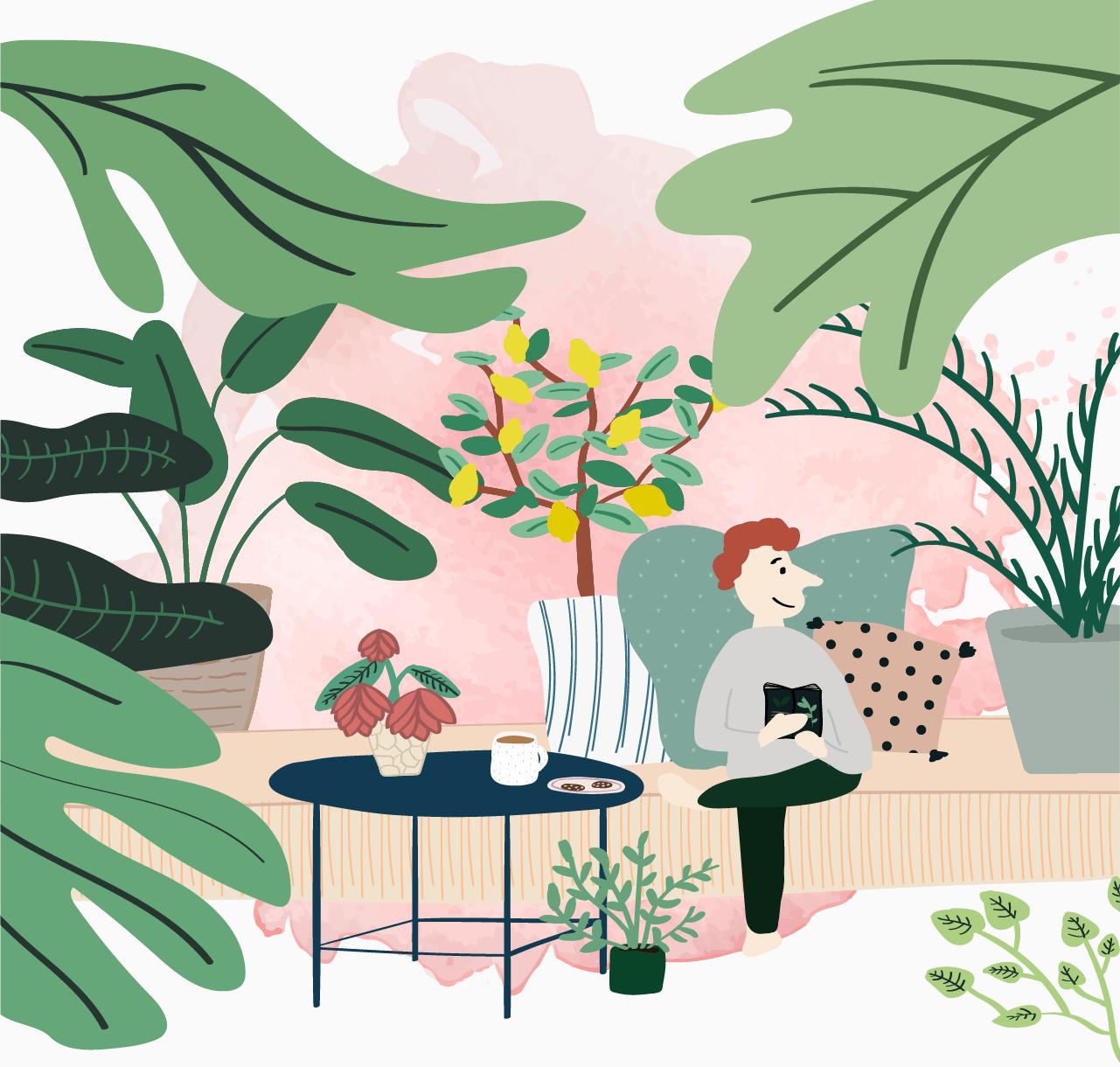 植物の使用図