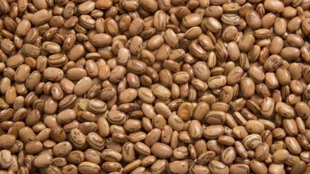 Produzido principalmente no Brasil, feijão carioquinha encareceu 54% neste ano, segundo IPCA-15