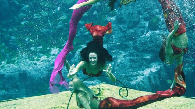 Sereias de Weeki Wachee Springs
