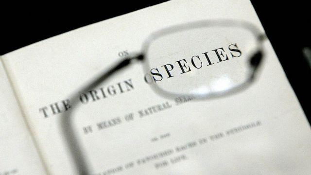 Origin of Species cover