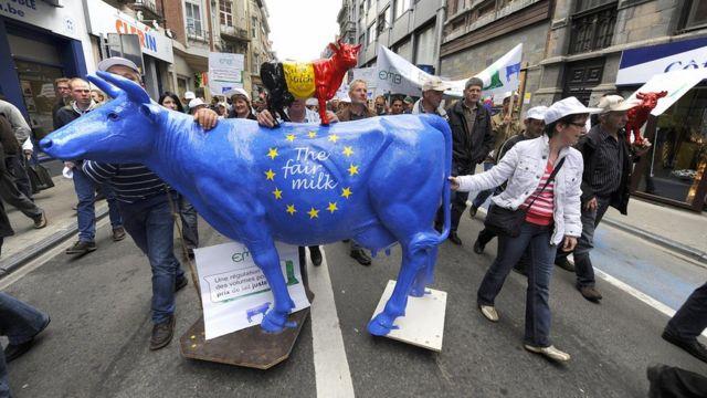 Manifestantes marchan arrastrando una vaca pintada con los colores de la UE encima de la cual hay otra más pequeña con los colores de la bandera belga
