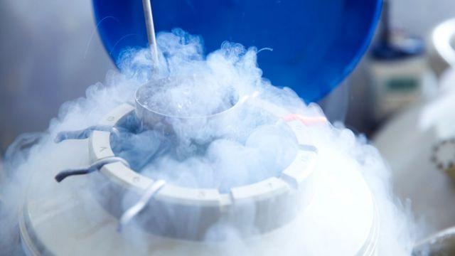 Óvulos armazenados em nitrogênio líquido