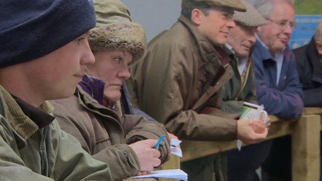 Exmoor farmers at auction