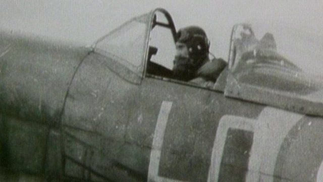 Spitfire Paddy in a plane