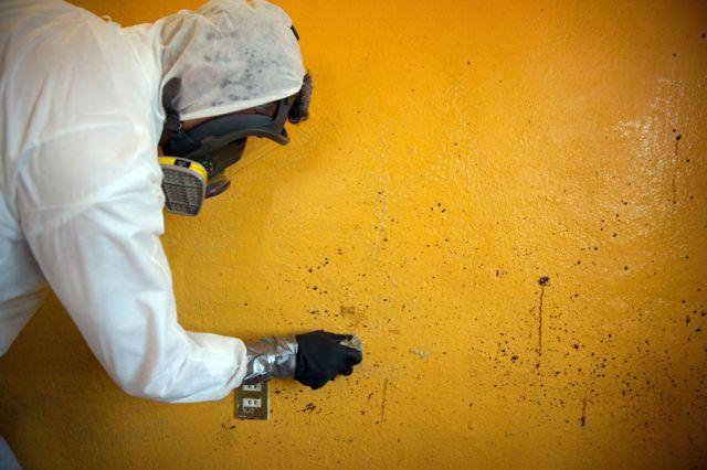 Donovan Tavera limpia una pared
