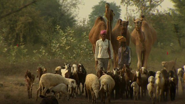 Farmers in Rajasthan