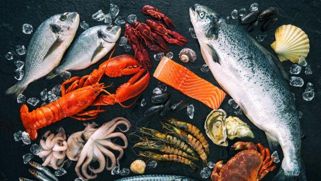 mesa de frutos do mar