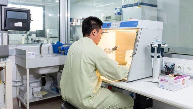 Une des équipes de Duong travaille sur un échantillon d'urine de chauve-souris