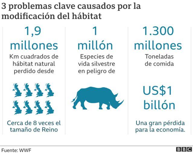 Gráfico de los problemas causados por la modificación del hábitat.