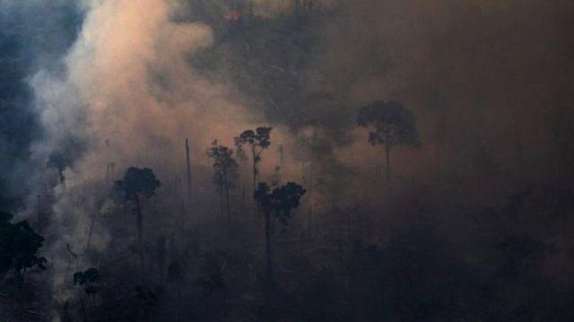 Amazonia com queimadas