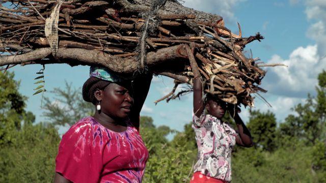 Refugees in Uganda carrying wood