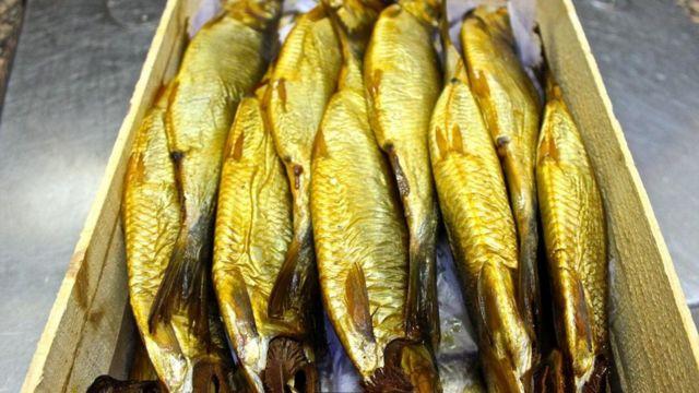 سمك الرنجة أطيب مذاقا وأقل رائحة من الفسيخ