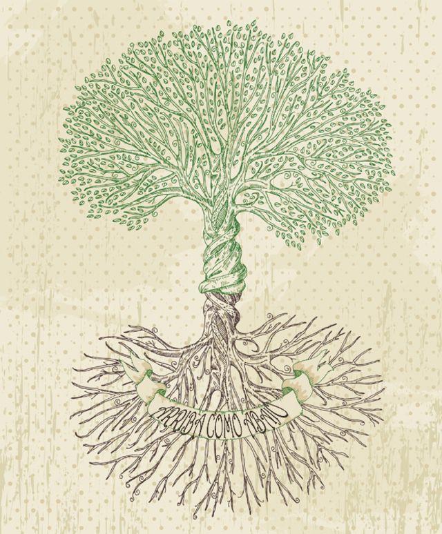 Árbol con raíces