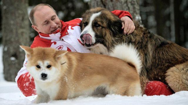 Putin sa psima
