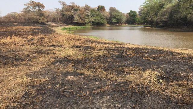 Rio abaixo da média no Pantanal e terra queimada