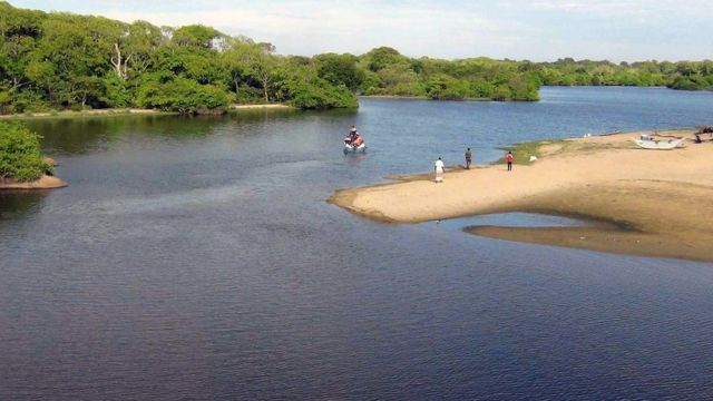 Sri Lankan officials were pictured searching for Mr McCann's body in a lagoon near the village of Panama, Sri Lanka