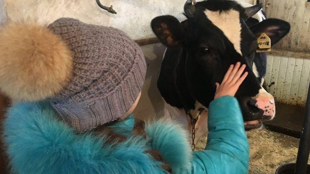Una niña con una vaca