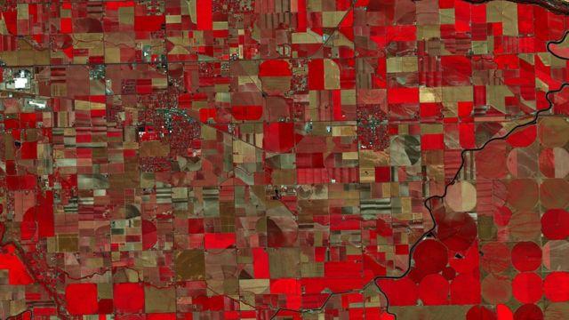 Idaho Infrared