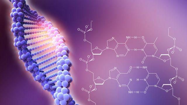 Estructura helicoidal del ADN