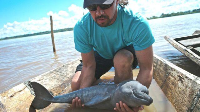 Fernando Trujillo en un bote con un delfín bebé en sus manos Foto: Fundación Omacha