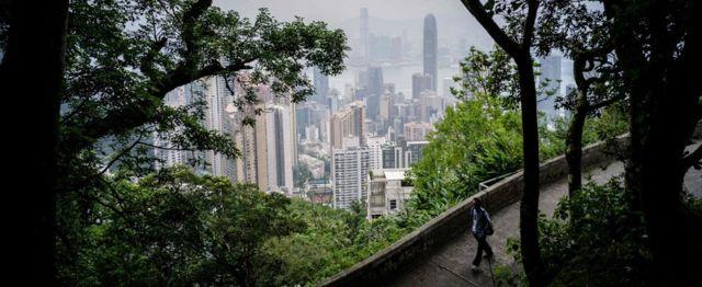 a man walks down a leafy path on Victoria Peak in Hong Kong