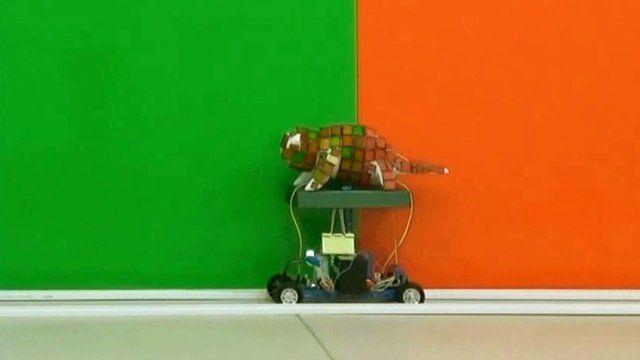 The chameleon robot