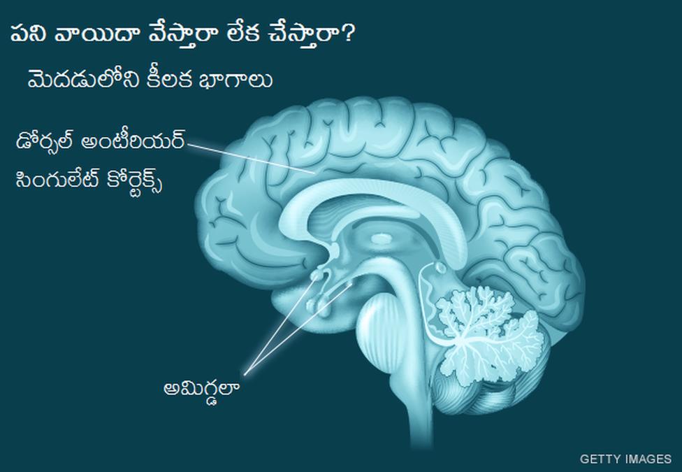 పని వాయిదా వేస్తారా