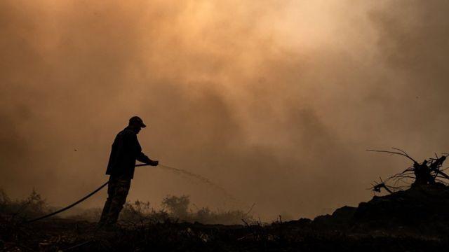 Brigadista combate chama no Pantanal