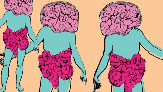 Илустација црева-мозак
