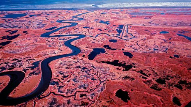 凍土層融化