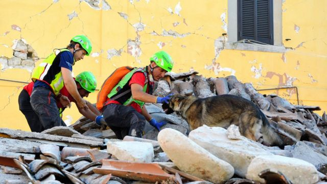 Rescatitas en un terremoto