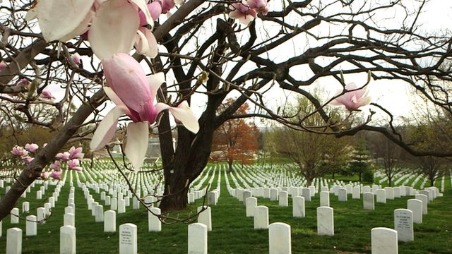 Elaine Harmon, a WW2 pilot, has been denied burial in Arlington cemetery. Her family is fighting to change that.