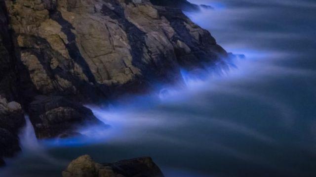 ظاهرة البحر المتوهج