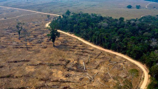 Área desmatada próxima a uma área de floresta tropical na Amazônia