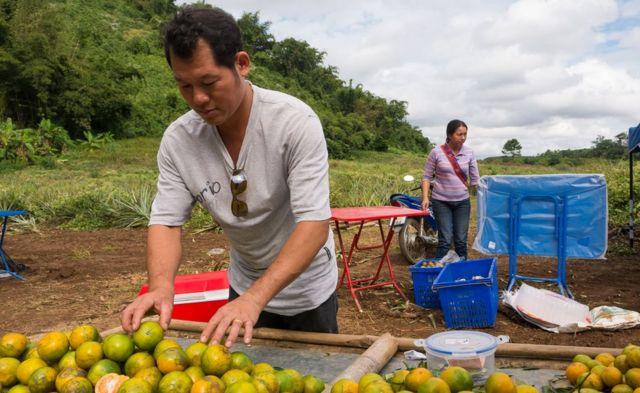 Archawin Mopoaku vendiendo naranjas.
