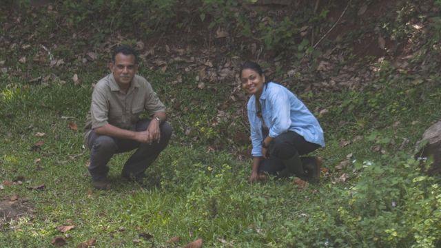 மர்மத் தவளை - மேற்குத் தொடர்ச்சி மலையில் கண்டுபிடிக்கப்பட்ட ரகசியத் தவளை இனம்