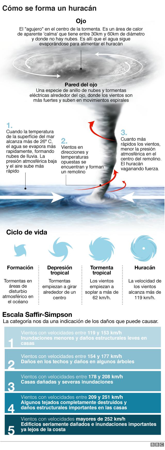 Florence Mangkhut Cuál Es La Diferencia Entre Huracanes Tifones Y Ciclones Bbc News Mundo