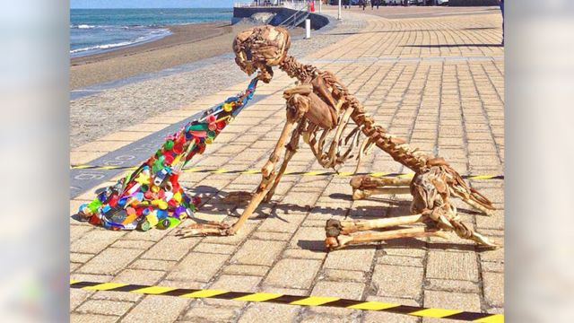 Plastic pollution: Vomiting skeleton displayed in Aberystwyth